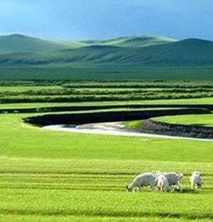 【云水】草原深处美如诗(诗歌·时光征文)